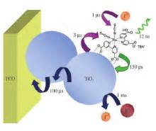 THESIS TF2325 TITLE Dye-Sensitized Solar Cells DSSC